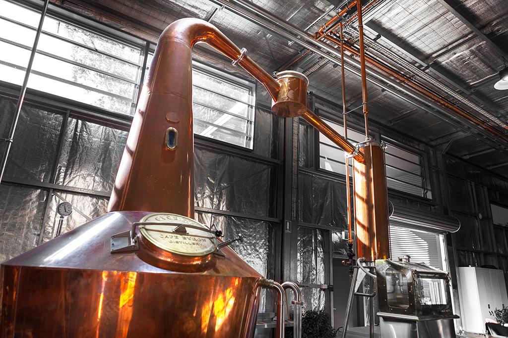 Cape Byron Distillery, Byron Bay