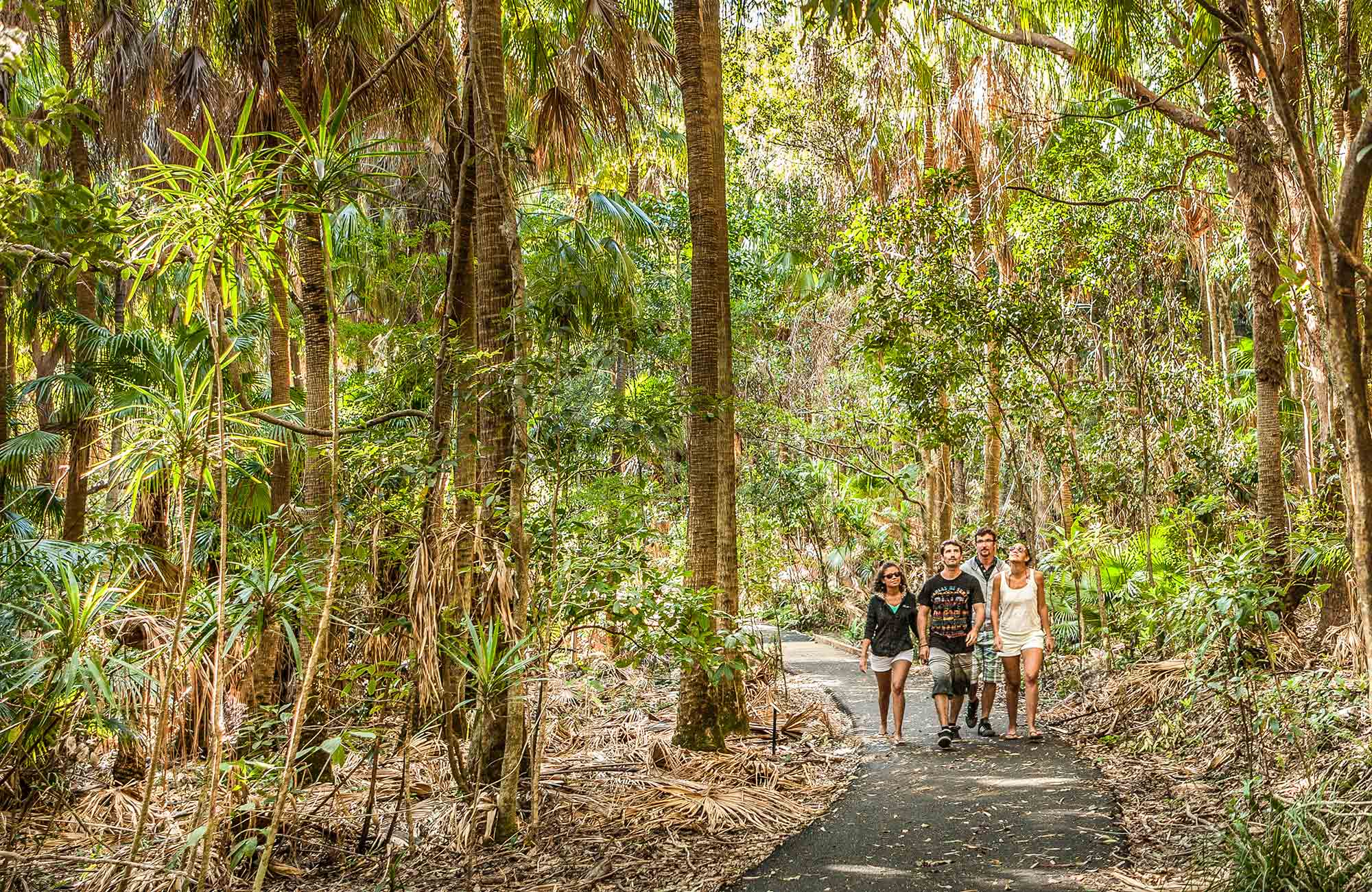 Palm Valley walk, Cape Byron